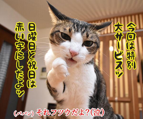 あずだいカレンダー 販売開始デースッ 猫の写真で4コマ漫画 3コマ目ッ