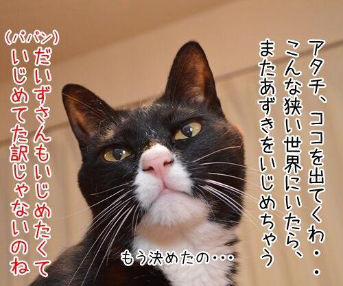 イジメ・ダメ・ゼッタイ 猫の写真で4コマ漫画 3コマ目ッ
