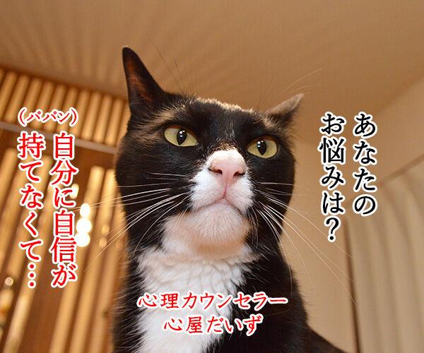 心理カウンセラー だいず 猫の写真で4コマ漫画 1コマ目ッ