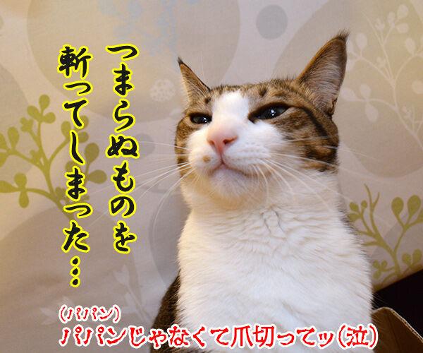 猫侍 其の一 猫の写真で4コマ漫画 4コマ目ッ