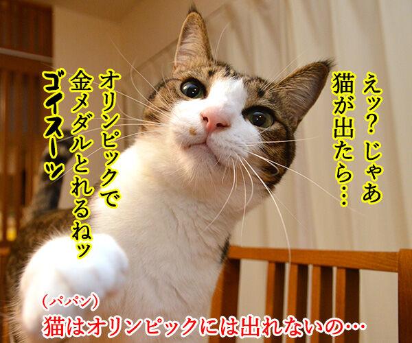 猫の足の速さは? 猫の写真で4コマ漫画 3コマ目ッ