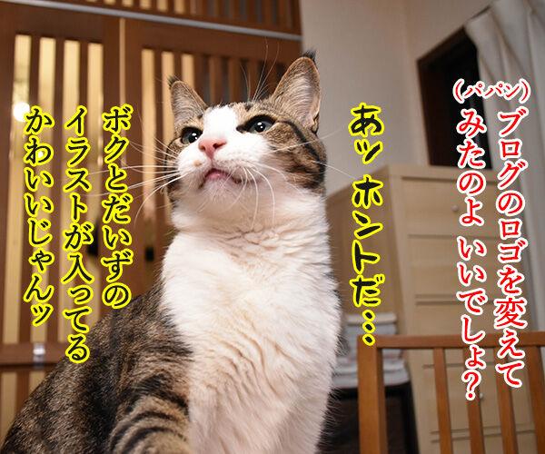 ブログのロゴを変えてみたのよッ 猫の写真で4コマ漫画 1コマ目ッ