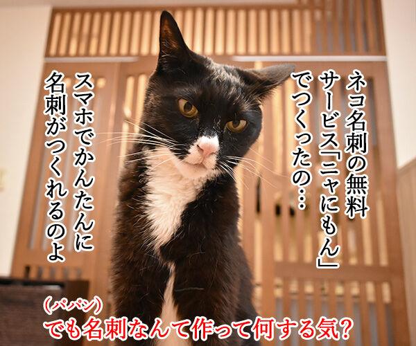 『ニャにもん』で猫の名刺データが作れるのよッ 猫の写真で4コマ漫画 2コマ目ッ