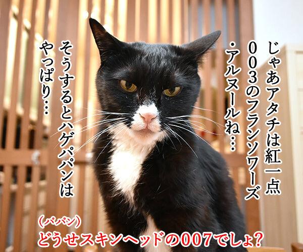 サイボーグ009ごっこするよーッ 猫の写真で4コマ漫画 3コマ目ッ