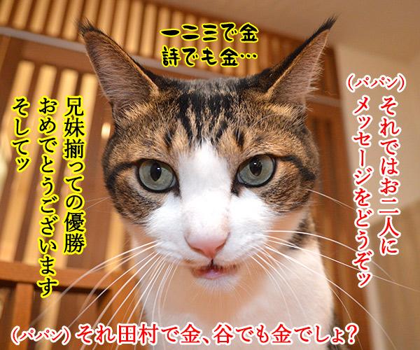 東京オリンピック ガンバレ!!ニッポン!! 猫の写真で4コマ漫画 3コマ目ッ