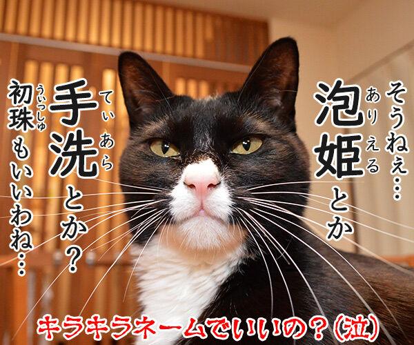 名前の由来 猫の写真で4コマ漫画 4コマ目ッ