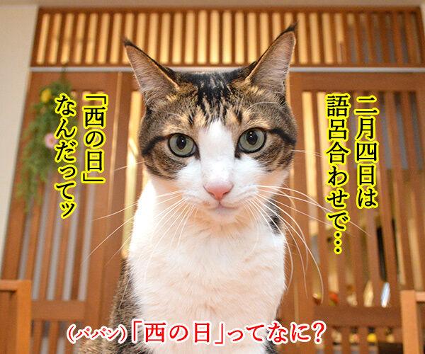 2月4日は『西の日』なんですってッ 猫の写真で4コマ漫画 1コマ目ッ