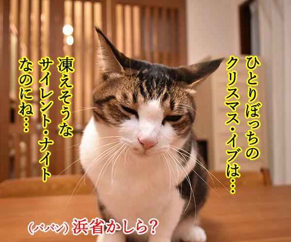 11月12月はカップル成立率が低いんですってッ 猫の写真で4コマ漫画 3コマ目ッ