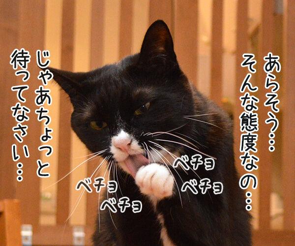 うぅ~ん… 猫の写真で4コマ漫画 3コマ目ッ