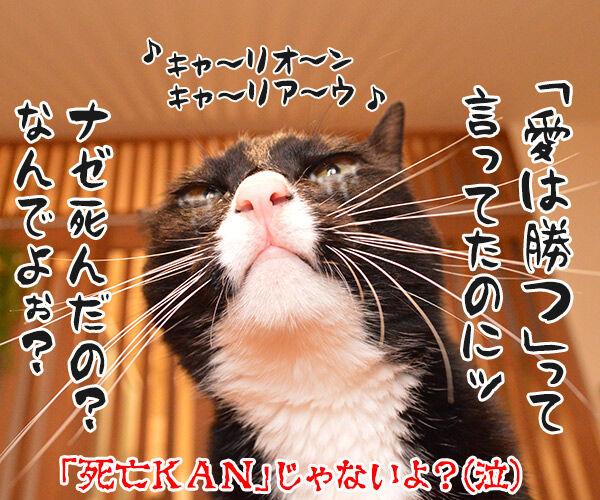 非アルコール性脂肪肝(NASH)になっちゃったの 猫の写真で4コマ漫画 4コマ目ッ