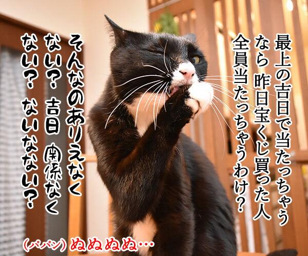 天赦日だから年末ジャンボを買ったのよッ 猫の写真で4コマ漫画 2コマ目ッ