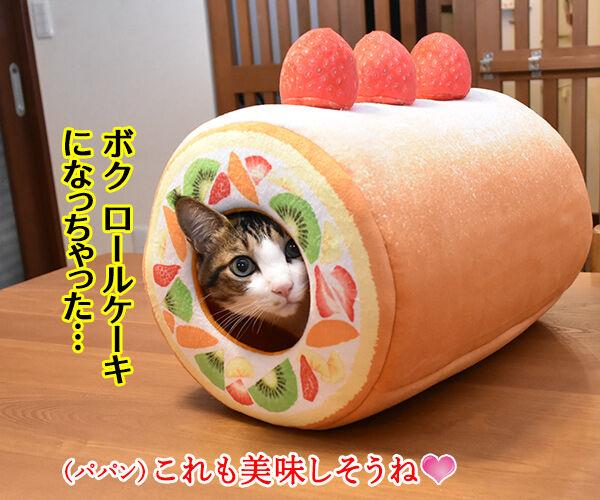 フルーツタルトにゃんことロールケーキにゃんこ 猫の写真で4コマ漫画 2コマ目ッ