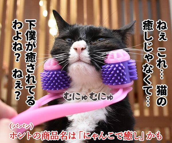 『全身マッサー術 にゃんこの癒し』で癒しちゃうわよッ 猫の写真で4コマ漫画 4コマ目ッ