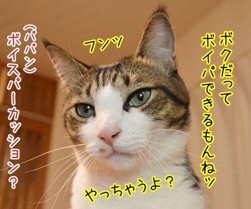 音楽っていいねッ 猫の写真で4コマ漫画 3コマ目ッ