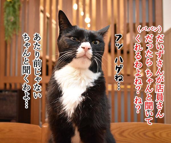 コンビニの袋詰めの話なのよッ 猫の写真で4コマ漫画 3コマ目ッ