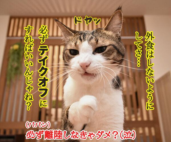 ペットフードの消費税は何%? 猫の写真で4コマ漫画 4コマ目ッ