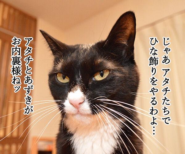 きょうはたのしいひな祭り 猫の写真で4コマ漫画 2コマ目ッ