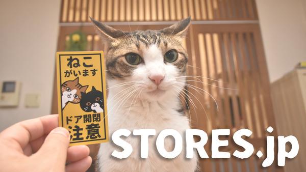 eye-catch-store