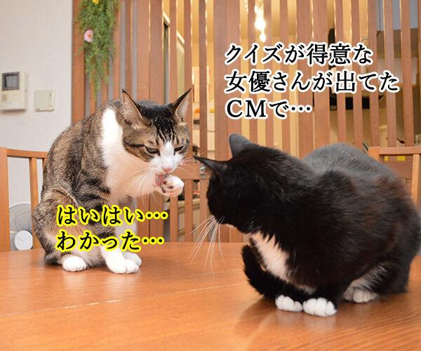 パパンを見るとあのCMを思い出す 猫の写真で4コマ漫画 3コマ目ッ
