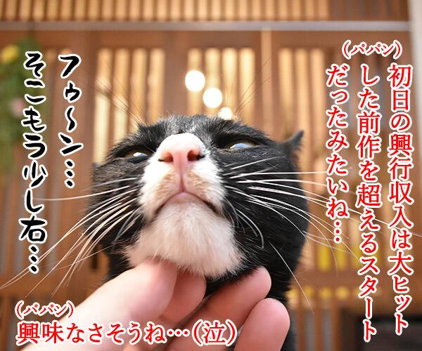 漫画「銀魂」が最終回まで残り5話なんですってッ 猫の写真で4コマ漫画 2コマ目ッ