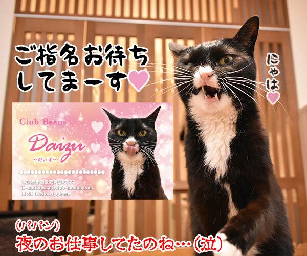「ニャにもん」で名刺をつくったのよッ 猫の写真で4コマ漫画 4コマ目ッ