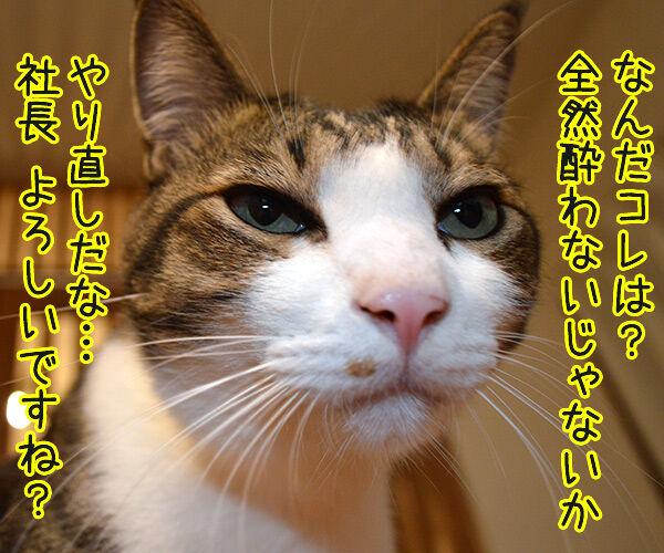 マタタビーX 猫の写真で4コマ漫画 3コマ目ッ