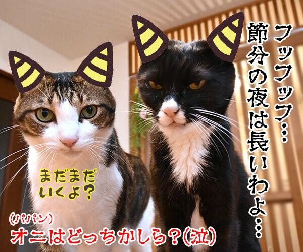 節分はアタチ達 豆兄弟にまかせてちょうだいッ 猫の写真で4コマ漫画 4コマ目ッ