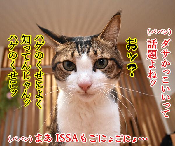 DA PUMPのU.S.Aはダサかっこいいのよッ 猫の写真で4コマ漫画 2コマ目ッ