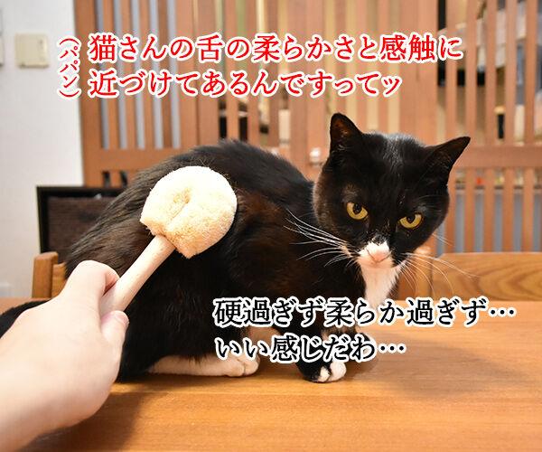 たわし作り一筋50年の職人が作る猫用たわしなのッ 猫の写真で4コマ漫画 2コマ目ッ