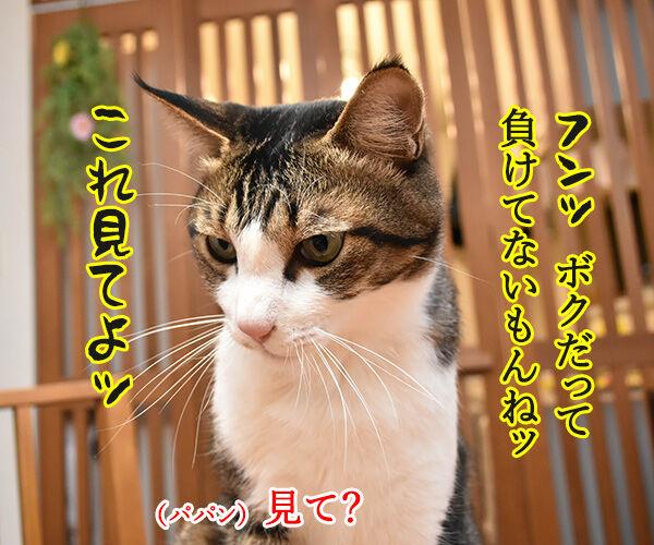 アタチ イケボにしびれちゃうのッ 猫の写真で4コマ漫画 3コマ目ッ