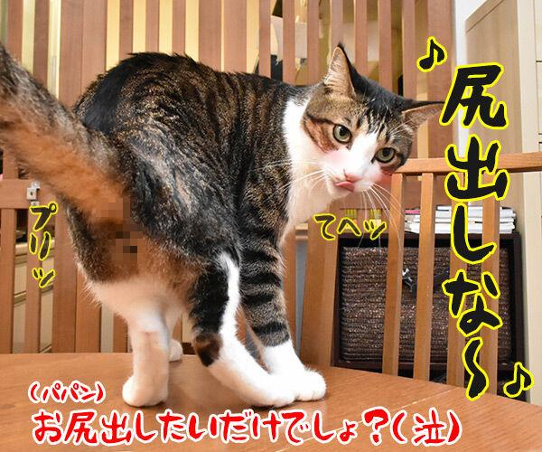 「まんが日本昔ばなし」常田富士男さんにつづき市原悦子さんも亡くなられました 猫の写真で4コマ漫画 4コマ目ッ