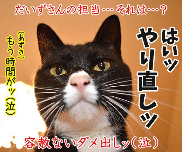 4コマのつくりかた 猫の写真で4コマ漫画 4コマ目ッ