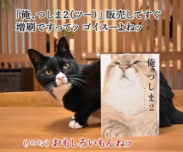 『俺、つしま2(ツー)』の2巻が出たのよッ 猫の写真で4コマ漫画 2コマ目ッ