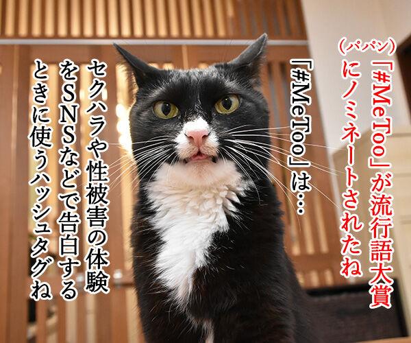 流行語大賞 ノミネート語 『#MeToo』 猫の写真で4コマ漫画 1コマ目ッ