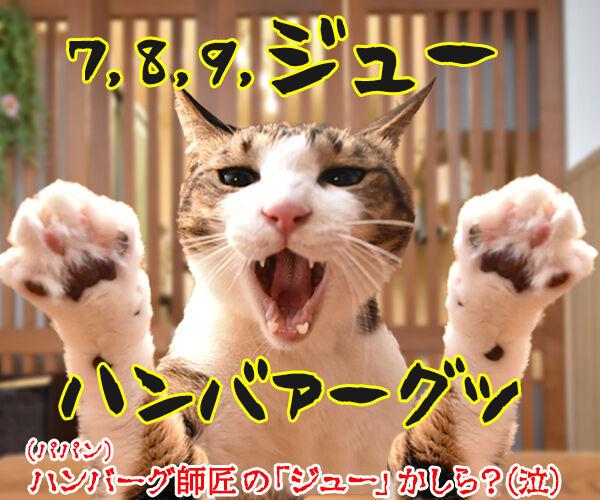 自由っていったいなんだぁーい? 猫の写真で4コマ漫画 4コマ目ッ