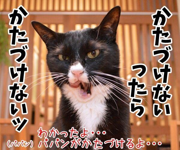 遊んだオモチャはかたづけてよねッ 猫の写真で4コマ漫画 3コマ目ッ