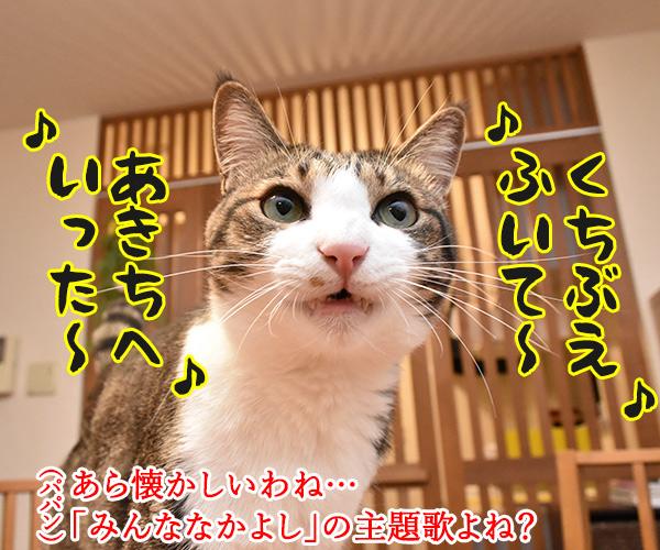 くちぶえふいてあきちへいったら 猫の写真で4コマ漫画 1コマ目ッ