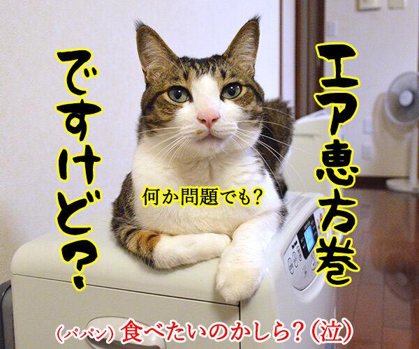節分の日のエア〇〇 猫の写真で4コマ漫画 4コマ目ッ