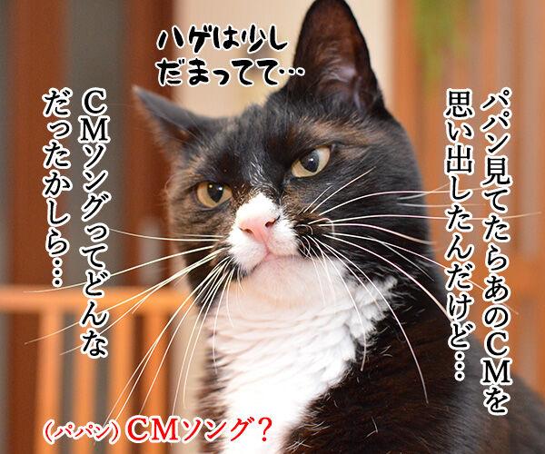 パパンを見るとあのCMを思い出す 猫の写真で4コマ漫画 2コマ目ッ