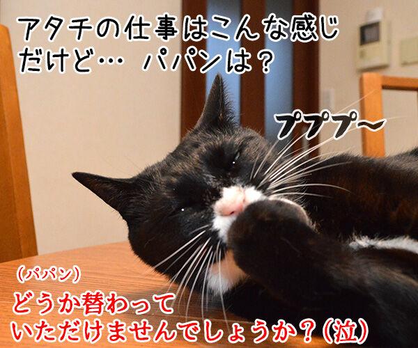 明日からお仕事 猫の写真で4コマ漫画 4コマ目ッ