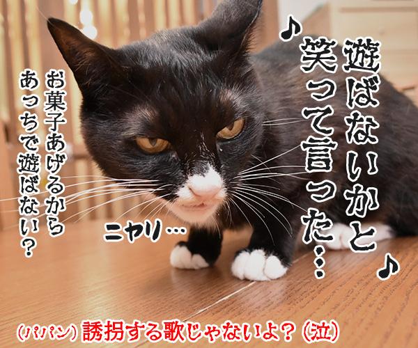 くちぶえふいてあきちへいったら 猫の写真で4コマ漫画 4コマ目ッ