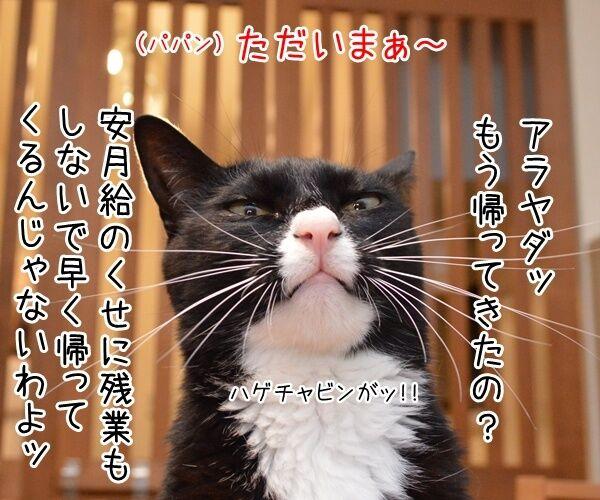 だいず女王様をなんとかしてよッ 猫の写真で4コマ漫画 1コマ目ッ