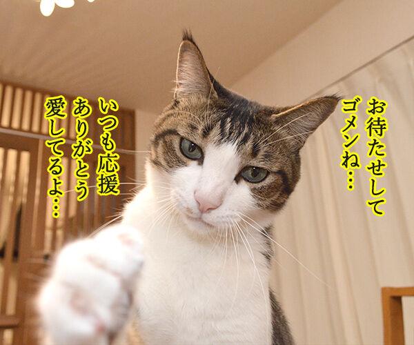 あずきさんの握手会 猫の写真で4コマ漫画 3コマ目ッ