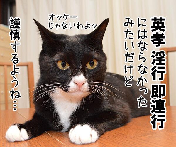 狩野英孝がまたやらかしちゃったね 猫の写真で4コマ漫画 2コマ目ッ