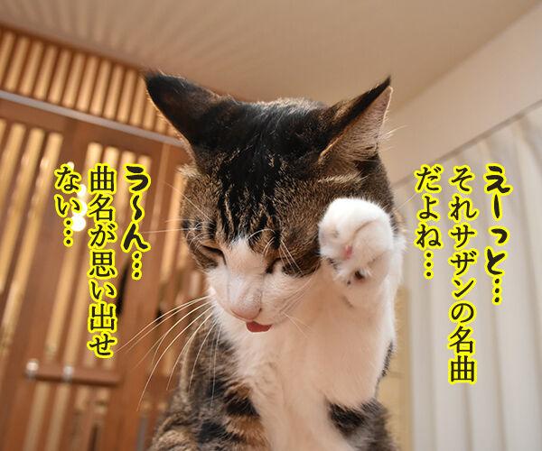 あの曲名が思い出せないのよッ 猫の写真で4コマ漫画 2コマ目ッ