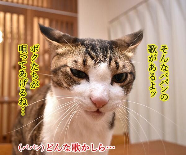 パパンはひきこもりニートってウワサなのッ 猫の写真で4コマ漫画 2コマ目ッ