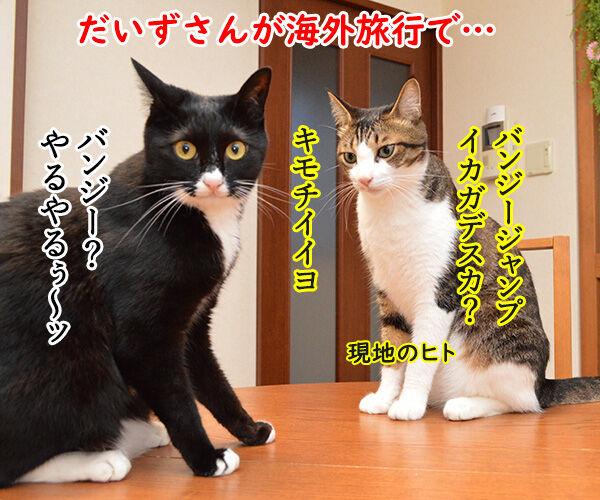 海外旅行でバンジージャンプ 猫の写真で4コマ漫画 1コマ目ッ