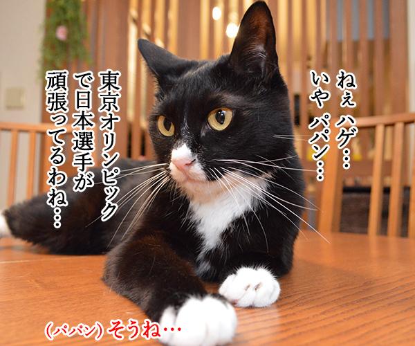 東京オリンピック ガンバレ!!ニッポン!! 猫の写真で4コマ漫画 1コマ目ッ