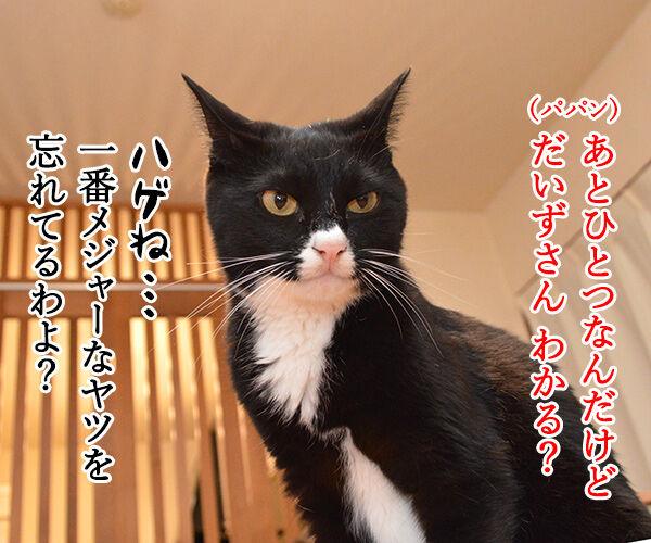 夏休みの宿題が終わらないの… 猫の写真で4コマ漫画 3コマ目ッ