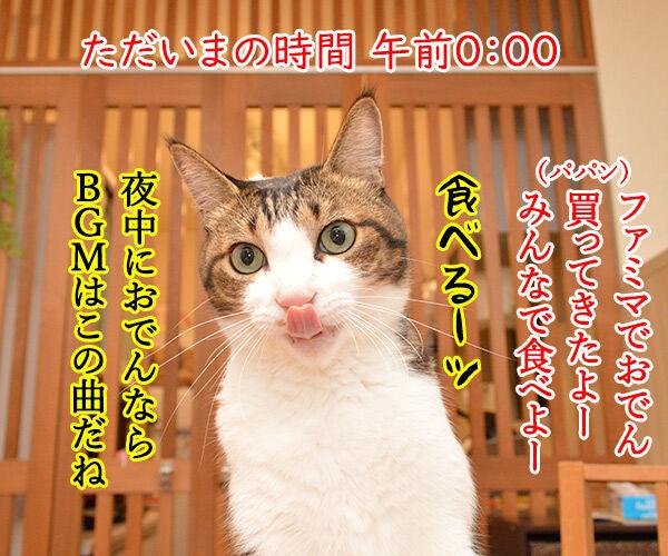 おでんのBGMといえばこの曲よねッ 猫の写真で4コマ漫画 1コマ目ッ